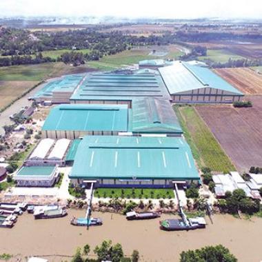 Nhà máy chế biến lương thực XK Thoại Sơn